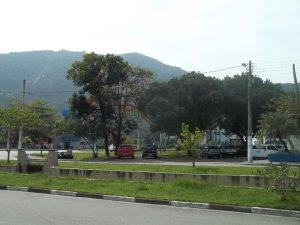 arborizacao-08