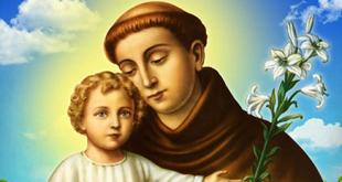 Santo Antonio de Pádua_Padroeiro de Caraguatatuba 1